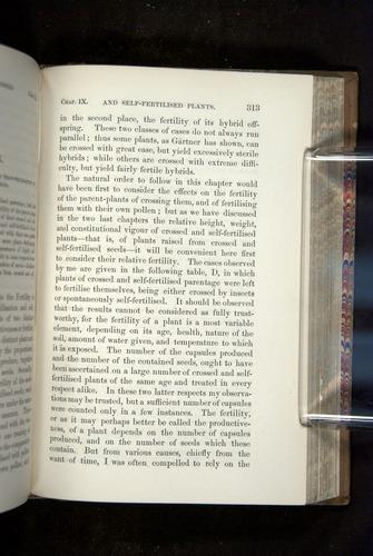 Image of Darwin-F1249-1876-313