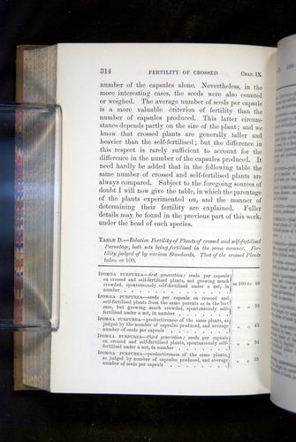 Image of Darwin-F1249-1876-314