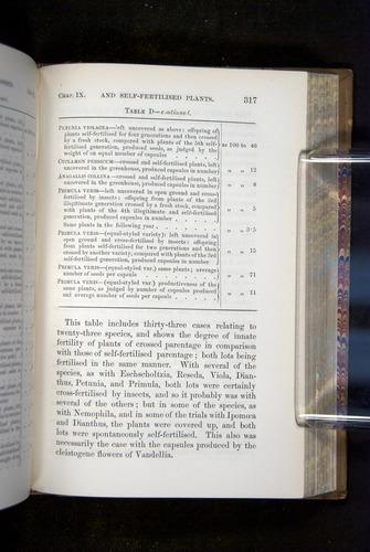 Image of Darwin-F1249-1876-317