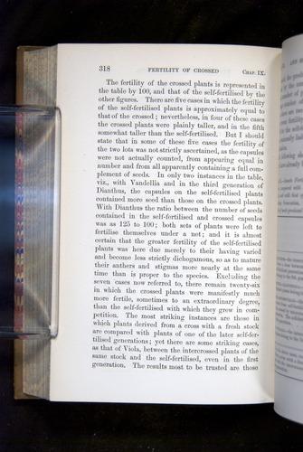 Image of Darwin-F1249-1876-318