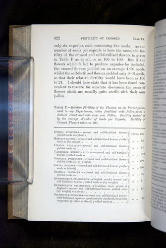 Image of Darwin-F1249-1876-322