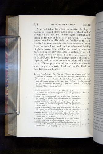 Image of Darwin-F1249-1876-324