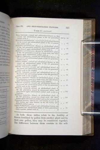 Image of Darwin-F1249-1876-325