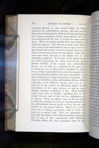 Image of Darwin-F1249-1876-326