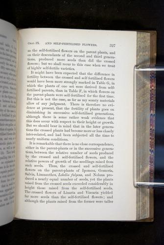 Image of Darwin-F1249-1876-327