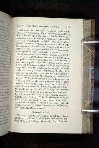 Image of Darwin-F1249-1876-329