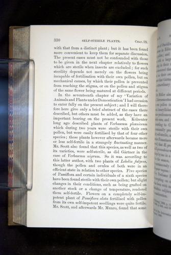 Image of Darwin-F1249-1876-330