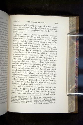 Image of Darwin-F1249-1876-335