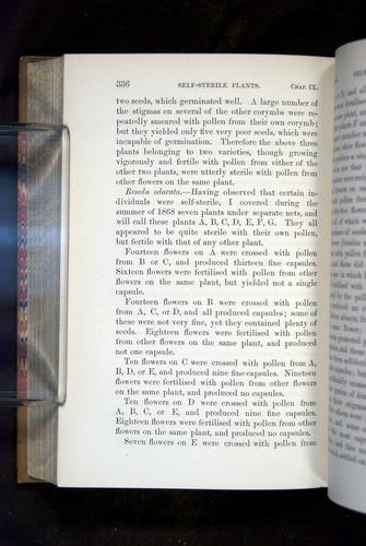 Image of Darwin-F1249-1876-336