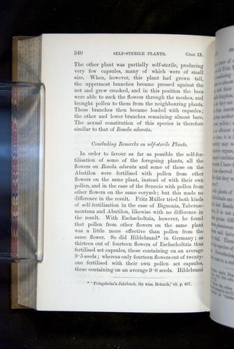 Image of Darwin-F1249-1876-340