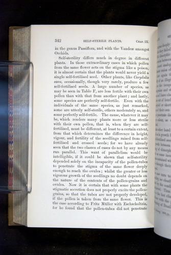 Image of Darwin-F1249-1876-342