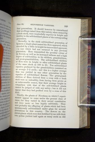Image of Darwin-F1249-1876-349