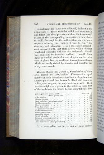 Image of Darwin-F1249-1876-352