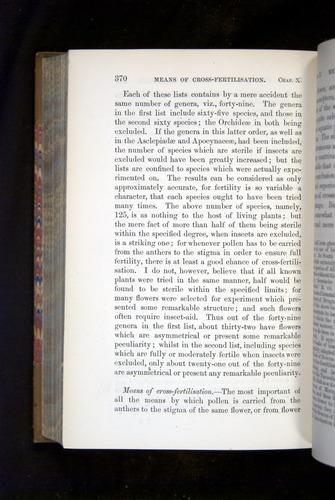 Image of Darwin-F1249-1876-370