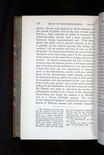 Image of Darwin-F1249-1876-376