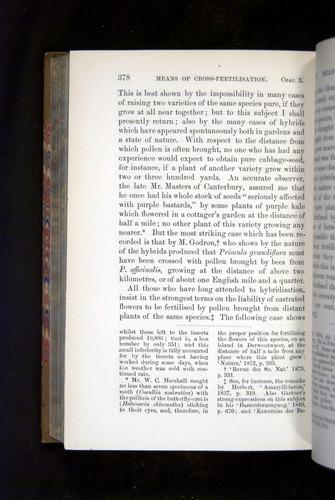 Image of Darwin-F1249-1876-378
