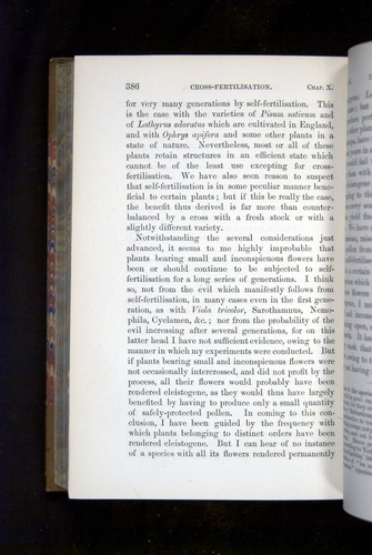 Image of Darwin-F1249-1876-386