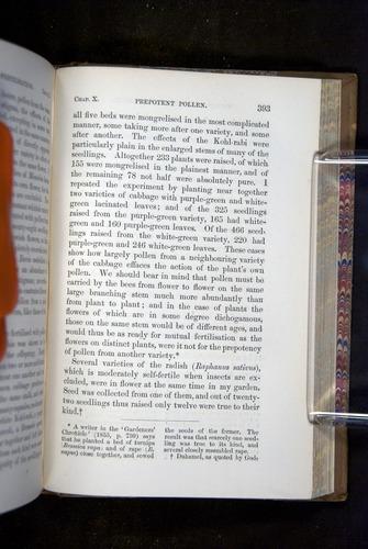 Image of Darwin-F1249-1876-393