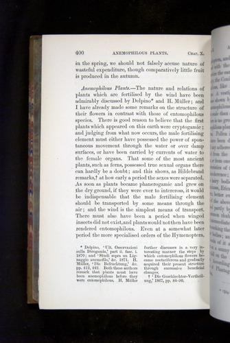 Image of Darwin-F1249-1876-400
