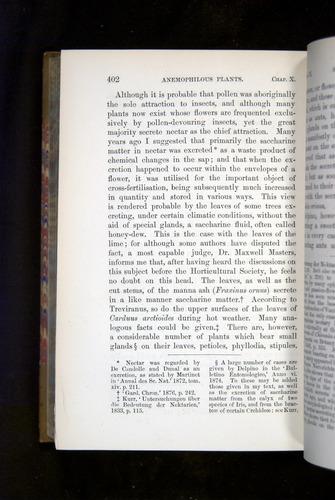 Image of Darwin-F1249-1876-402