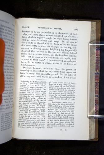 Image of Darwin-F1249-1876-403