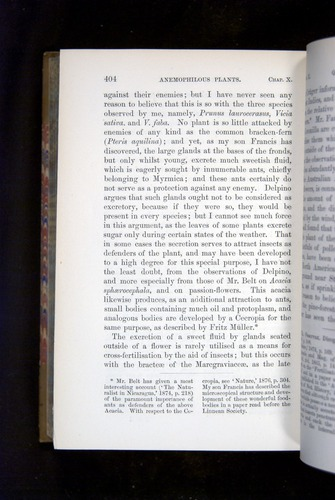 Image of Darwin-F1249-1876-404