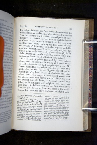 Image of Darwin-F1249-1876-405