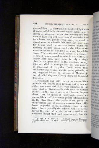 Image of Darwin-F1249-1876-408