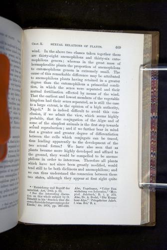Image of Darwin-F1249-1876-409