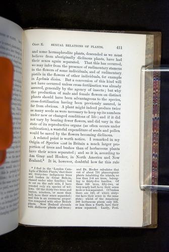 Image of Darwin-F1249-1876-411