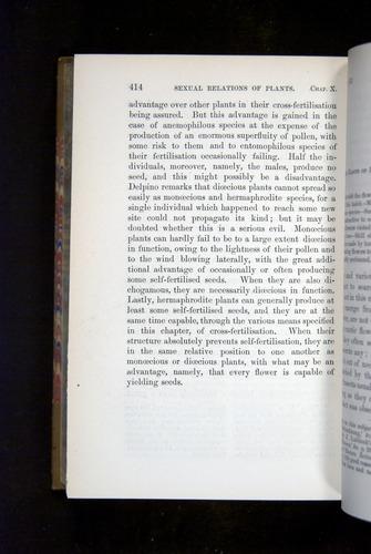 Image of Darwin-F1249-1876-414