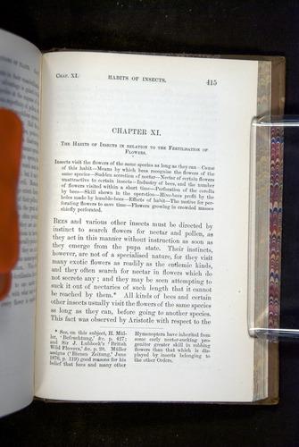 Image of Darwin-F1249-1876-415