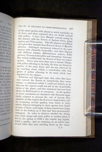 Image of Darwin-F1249-1876-417
