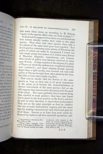 Image of Darwin-F1249-1876-419