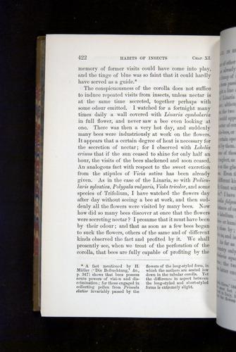 Image of Darwin-F1249-1876-422