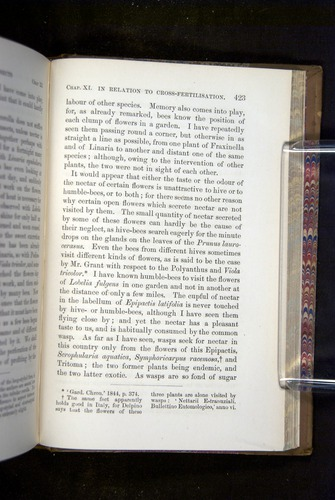 Image of Darwin-F1249-1876-423