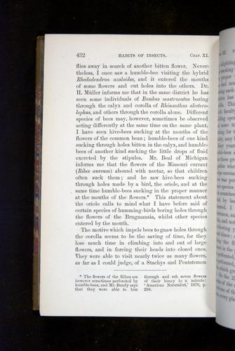 Image of Darwin-F1249-1876-432