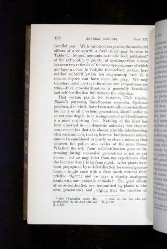 Image of Darwin-F1249-1876-438