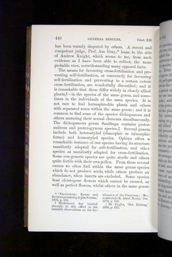 Image of Darwin-F1249-1876-440