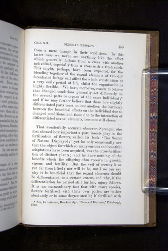 Image of Darwin-F1249-1876-455