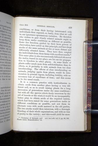 Image of Darwin-F1249-1876-459