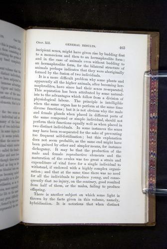 Image of Darwin-F1249-1876-463