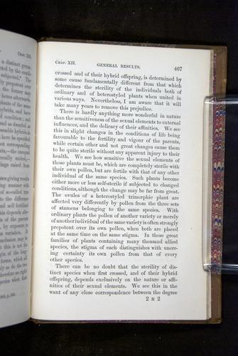 Image of Darwin-F1249-1876-467