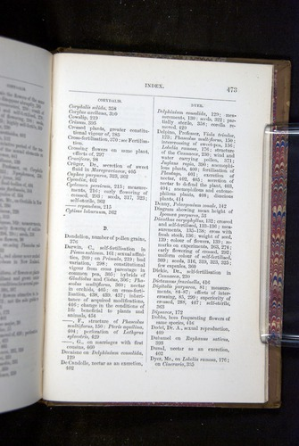 Image of Darwin-F1249-1876-473