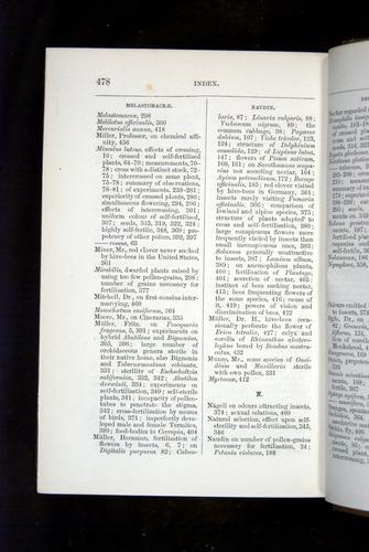 Image of Darwin-F1249-1876-478