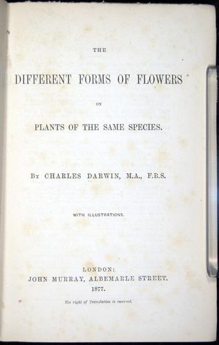 Image of Darwin-F1277-1877-000-tp