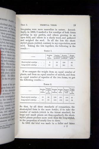 Image of Darwin-F1277-1877-019