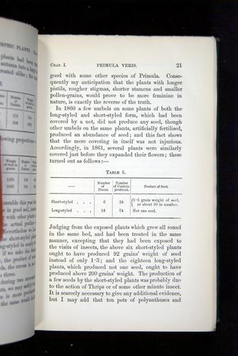 Image of Darwin-F1277-1877-021