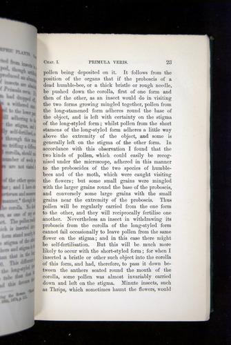 Image of Darwin-F1277-1877-023