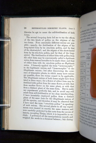 Image of Darwin-F1277-1877-024